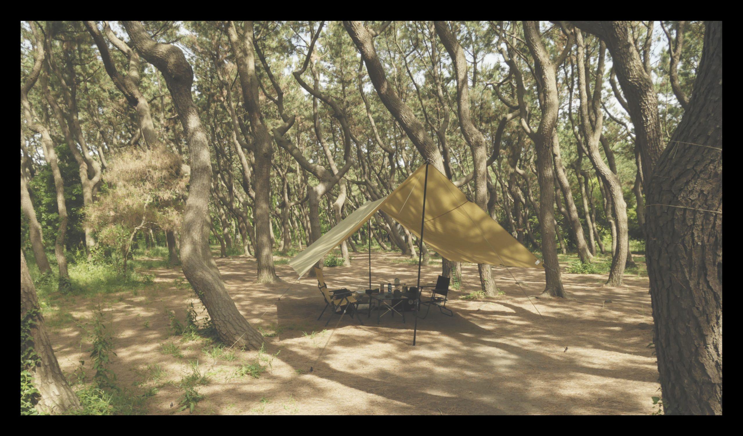 赤ちゃんキャンプ